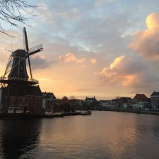 This Is Haarlem - Adriaan windmill